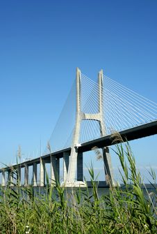 Free Vasco Gama Bridge Stock Images - 8133764