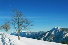 Free High Mountains Snow Landscape Royalty Free Stock Image - 8136776