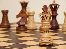 Free Chess Queen Stock Photo - 8143020