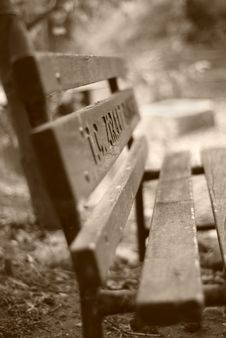 Free Bench In The Park Stock Images - 8143504