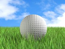 Free Golf Ball On Field Stock Images - 8143554
