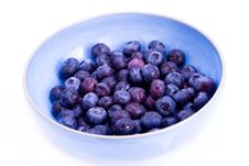 Free Bowl Of Blueberries Royalty Free Stock Photos - 8144038