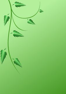 Free Green Leaves Stock Photos - 8145303