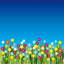Free Background With Flower Stock Photos - 8148443