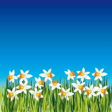 Free Background With Flower Royalty Free Stock Images - 8148509