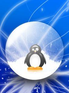 Free Pinguin Royalty Free Stock Photography - 8148557