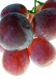 Free Fresh Grapes Royalty Free Stock Photography - 8149047