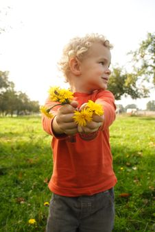 Free Kid Picking Up Flowers Royalty Free Stock Image - 8149126