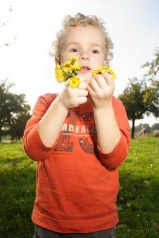 Free Kid Picking Up Flowers Royalty Free Stock Photo - 8149205