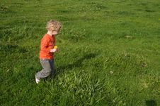 Kid Picking Up Flowers