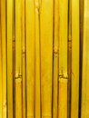 Free Bamboo Stalks Royalty Free Stock Image - 8154056