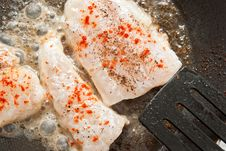 Free Fried Fish Royalty Free Stock Image - 8153596