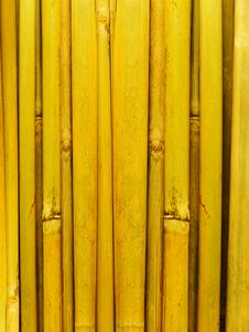 Free Bamboo Stalks Royalty Free Stock Image - 8154056