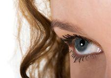 Free Blue Eye Stock Photos - 8157393