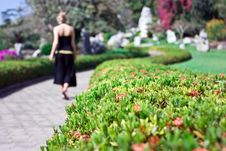 Lonely Girl Walking Royalty Free Stock Photography