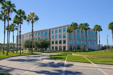 Free Office Building With Palms Royalty Free Stock Images - 8157649