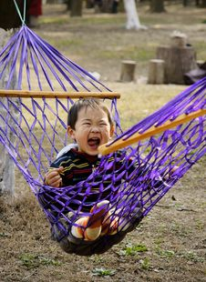 Free Boy In Hammock Royalty Free Stock Photography - 8158877
