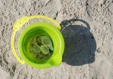 Free Toy Bucket With Shells On Beach Stock Image - 8159281