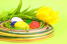 Free Colored Easter Eggs With Yellow Tulips Stock Photos - 8159893