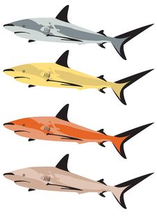 Free Colorful Sharks Royalty Free Stock Photos - 8159998