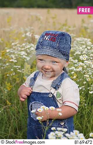 The kid and camomiles Stock Photo