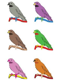 Free Colorful Canaries Stock Images - 8160034