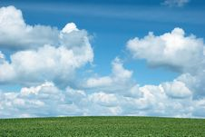 Green Hill Under Blue Cloudy Sky Royalty Free Stock Photography