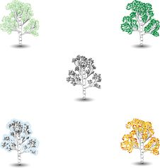 Free Tree1 Royalty Free Stock Photo - 8160755
