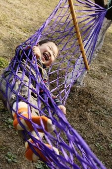 Free Boy In Hammock Royalty Free Stock Photography - 8161027