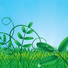 Free Ecological Background Stock Photo - 8161540