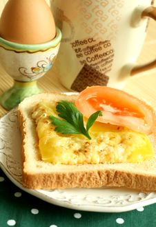 Toast With Fused Cheese And Slice Of A Tomato Royalty Free Stock Image