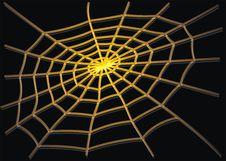 Free Yellow Cobweb Stock Photos - 8163493