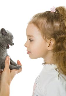 Free Young Girl With Kitten Royalty Free Stock Image - 8164306