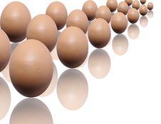 Free Eggs Stock Photo - 8164780
