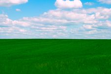 Free Field And Blue Sky Royalty Free Stock Photos - 8164938