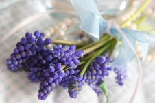 Free Spring Bouquet Stock Images - 8165784