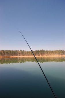 Free Fishing Royalty Free Stock Images - 8168759