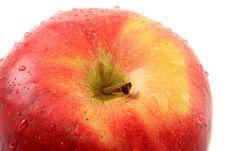 Free Apple. Royalty Free Stock Photo - 8168865