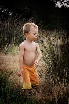 Free Child In Nature Royalty Free Stock Images - 8169099