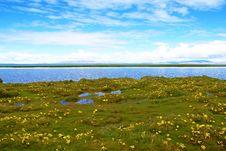 Free Tibet Scenery Stock Photos - 8169713