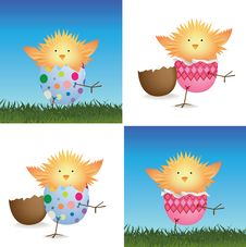 Free Set Of 4 Easter Chicks Stock Image - 8169931