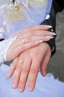 Free Hands Of A Newly-married Couple. Stock Images - 8170384