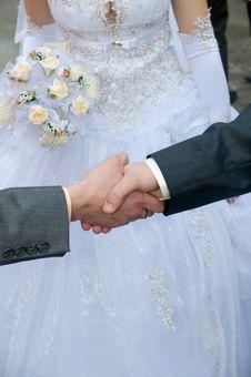 Free Hand Shake - A Congratulation. Royalty Free Stock Image - 8170466