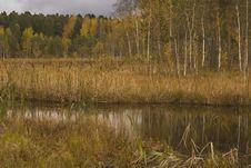 Free Black Lake In Zelenograd Stock Photo - 8170570