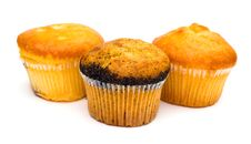 Free Three Muffins Isolated On White Stock Images - 8170854