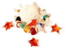 Free Shells And Stars Royalty Free Stock Photo - 8171005