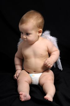 Free Little Angel Royalty Free Stock Photography - 8171157