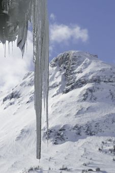 Free Icicle And Mountain Royalty Free Stock Photo - 8171995