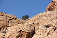 Free Desert Landscape Royalty Free Stock Photography - 8173187