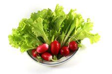 Free Garden Radish Stock Photo - 8174160